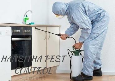 Hansitha pest control