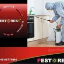 Pest O Rest