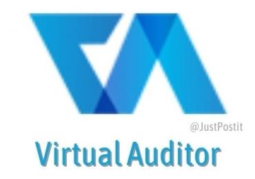 Virtual Auditor