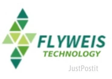 flyweis